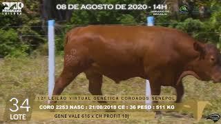 Coro 2253 b4 fiv