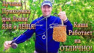 Как сделать самодельную кормушку для рыбалки на кольцо