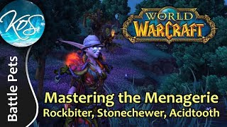 World of Warcraft: Mastering the Menagerie - ROCKBITER, STONECHEWER, ACIDTOOTH -WoW Battle Pet Strat