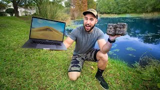 I Caught the Pond PREDATOR on Hidden Camera!!! (unexpected...)