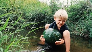 Eating Watermelon - Out Of The Creek!