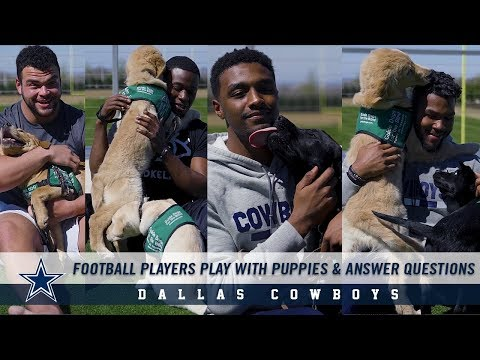 Dallas Cowboys Players Play With Puppies While Answering Questions | Dallas Cowboys 2019