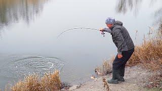 Рыбалка на хищника днепропетровск