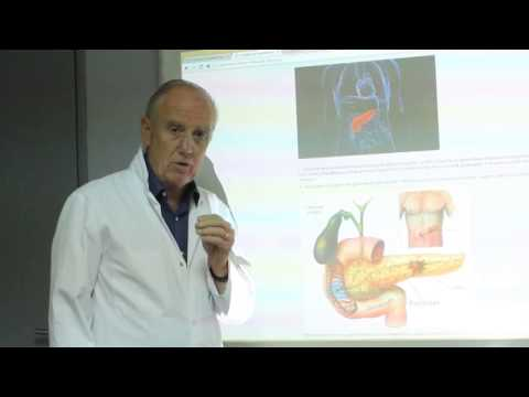 Cancer-Risks – Comment éviter le cancer du pancréas ? – Pr Henri Joyeux
