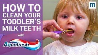 How To Clean Your Toddler's Milk Teeth   Aquafresh