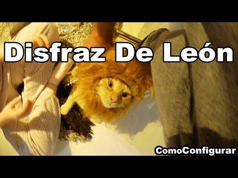 Disfraz De León Melena Para Gato - Peluca Para Mascotas