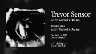 Trevor Sensor - Andy Warhol's Dream (Official Audio)