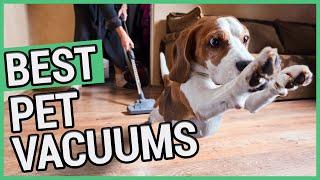 Best Vacuum For Pet Hair | 5 Best Pet Vacuum 2020 🐶 ✅