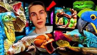 LARGEST Reptile ROOM TOUR In The WORLD!   Feeding ALLIGATORS, Holding SNAKES, Exotic BIRDS, & MORE!