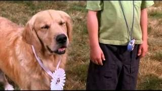 Air Bud - bande annonce