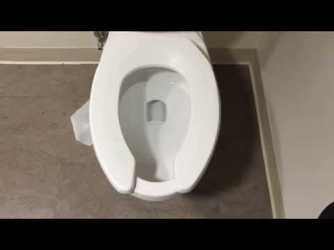 American Standard Glenwall Toilet Flush Video