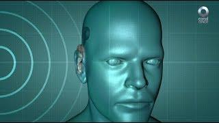 Factor Ciencia - Paisaje sonoro