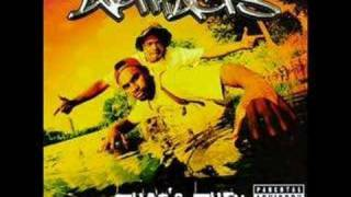 Artifacts - Who's This