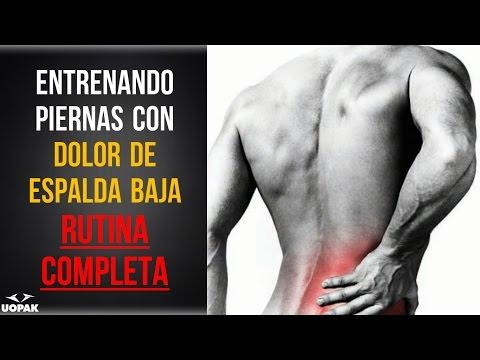 Sistema de columna vertebral