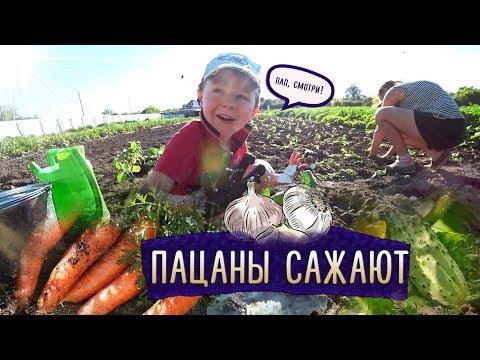 Деревенские будни / Очередной огородный влог / Пацаны сажают рассаду