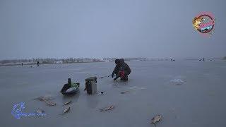 Ставка для рыбалка в николаевской области софиевское водохранилище