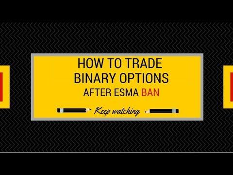 Best binary options brokers for beginners