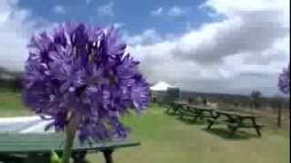 preview picture of video 'Driving Kula  Maui : マウイ ドライブ:クラのイチゴ狩り May, 23 (Sunday), 2010'