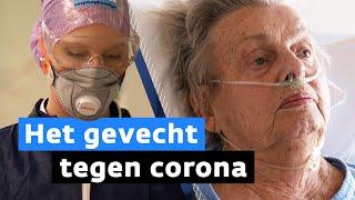 Zo gaat het eraan toe op de corona-afdeling van een Brabants ziekenhuis