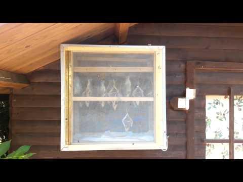 Jandeks Video über die Abmagerung