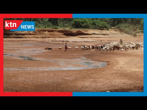 Bottomline Africa: Drought in North Eastern Kenya