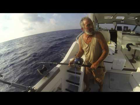 La pesca da un club mikhalych di pescatori di estate video pescando su un abramide comune