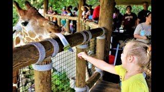 Влог Зоопарк в США СУПЕР развлечения