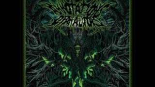 Annotations Of An Autopsy - Prosthetic Erection