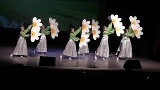Как сделать ромашку для танца ромашковое поле