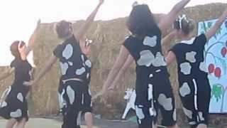 ריקוד הפרות שבועות דגניה ב' 2013