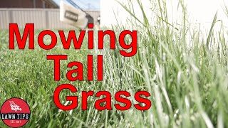 How To Mow Long Grass
