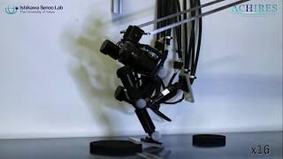 発掘!イグ・ノーベル賞(27)東京大学 高速画像処理技術で走るロボ(動画あり)