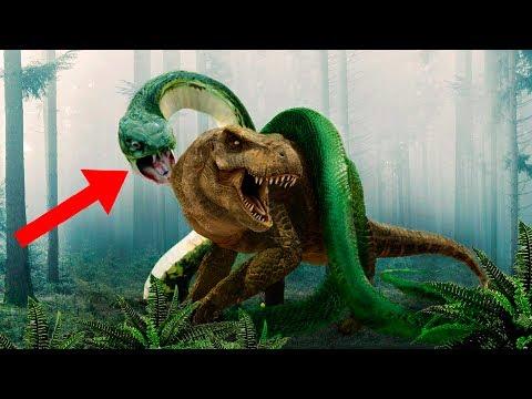 Most AMAZING Prehistoric Snakes!