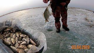 Сроки рыбалки в костанае