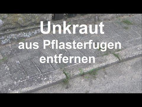 Unkraut in Fugen entfernen Unkraut mit Fugenkratzer bekämpfen Pflasterfugen Unkraut