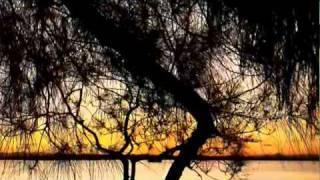 Annie Lennox   DARK ROAD
