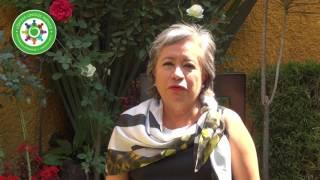 Vicky Cureño, la líder en la red más grande de la CDMX