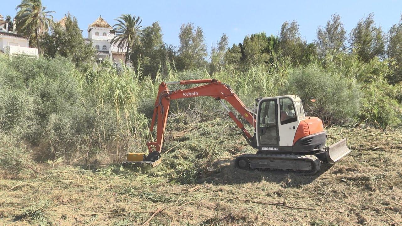 Limpieza medioambiental en la zona de Los Hidalgos
