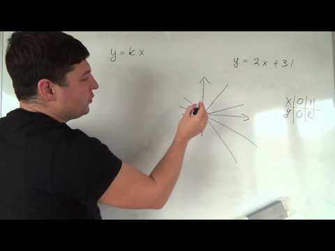 Алгебра 7 класс. 8 октября. y=kx