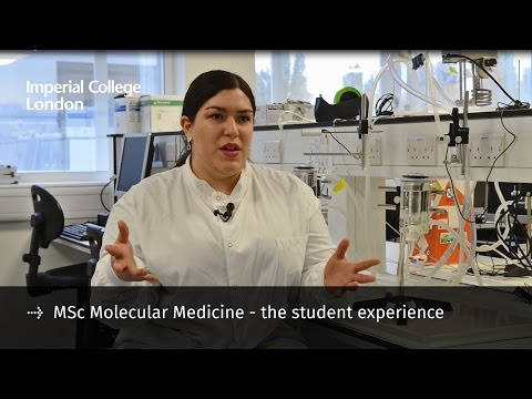 Video MSc Molecular Medicine - the student experience