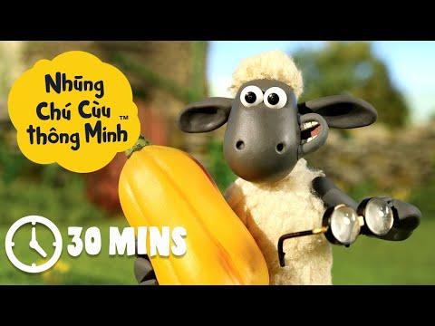 Những Chú Cừu Thông Minh