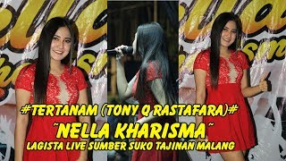 Gambar cover Tertanam (Tony Q Rastafara) - Nella Kharisma - Lagista Live Sumber Suko Tajinan Malang