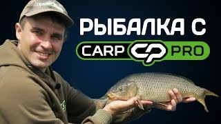 Рыбалка с Carp Pro! Фидерная рыбалка на крупного карася и карпа!