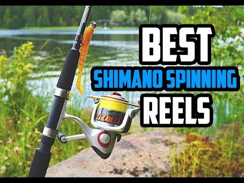 5 Best Shimano Spinning Reel2018 – 2019 | Reviews & Buying Guide