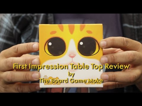 First Impression Table Top Review: Cat Tower