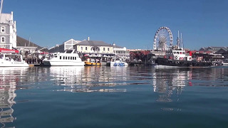 Waterfront Charters - Daily Boat Trips & Private Tours, Cape Town