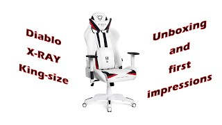 Diablo X-Ray Gaming Chair unboxing and first impressions (ENG SUB)