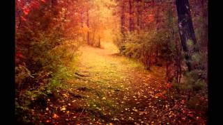 Skyforest - Autumnal Embrace