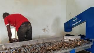 Usine de transformation entièrement automatique de la noix de cajou