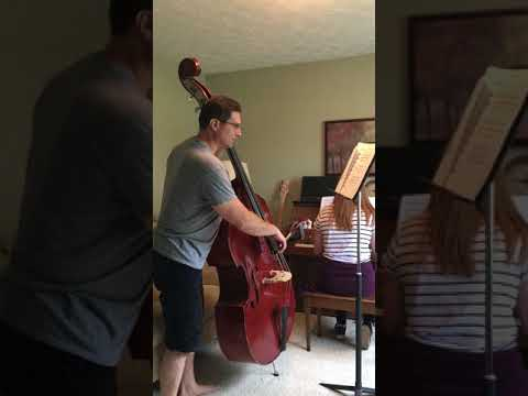 Playing the Elephant from Carnival of Animals by Saint-Seans.  The double bass is one of the instruments I teach.